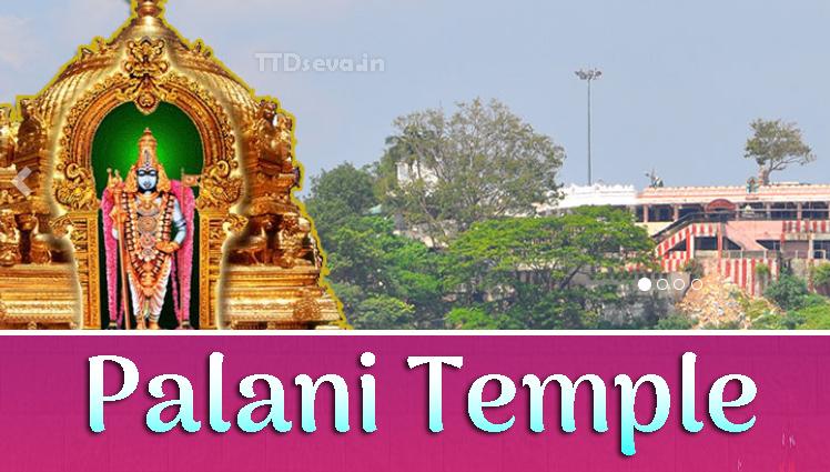 Palani Murugan Temple History, Timings Arulmigu Dandayudhapani
