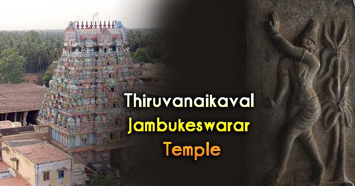 Thiruvanaikaval Jambukeswarar Temple History, Timings